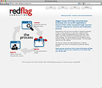 RedFlag Consulting Website Design